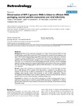 Dimerisation of HIV-2 genomic RNA is linked to efficient RNA packaging, normal particle maturation and viral infectivity