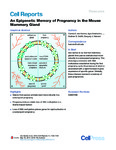 An Epigenetic Memory of Pregnancy in the Mouse Mammary Gland
